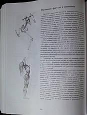 Основы учебного академического рисунка   Николай Ли, фото 3