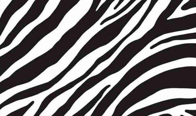 Самоклейка, оракал,  зебра, 45 см 15-6495