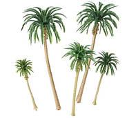 Набор 5 шт. пальма, высота 7-16 см., для диорам, миниатюр, детского творчества