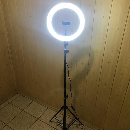 Кольцевая лампа 33 см со штативом на 2м лампа для селфи лампа для тик тока, фото 2