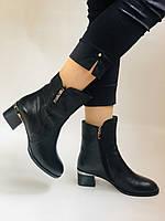 Жіночі черевики. На середньому каблуці. Натуральна шкіра.Висока якість. Polann. Р. 36, 38,39, 40.Vellena, фото 5