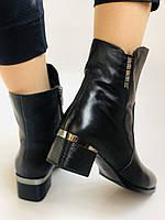 Жіночі черевики. На середньому каблуці. Натуральна шкіра.Висока якість. Polann. Р. 36, 38,39, 40.Vellena, фото 4