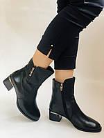 Жіночі черевики. На середньому каблуці. Натуральна шкіра.Висока якість. Polann. Р. 36, 38,39, 40.Vellena, фото 7