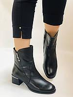 Жіночі черевики. На середньому каблуці. Натуральна шкіра.Висока якість. Polann. Р. 36, 38,39, 40.Vellena, фото 2