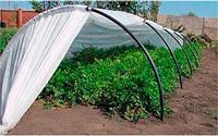 Парник Agreen, 10 м, 50%