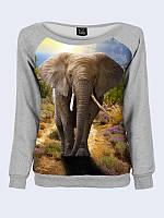 Женский  Свитшот Серый слон