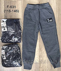 Спортивные штаны для мальчиков теплые  (рост 116-146)