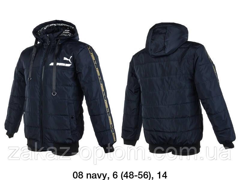 Куртка мужская ветровка норма (48-56) Украина оптом -59441
