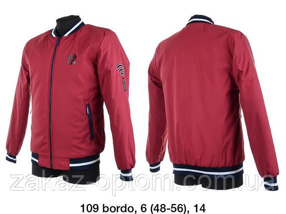 Куртка чоловіча вітровка норма (48-56) Україна оптом -59447, фото 2