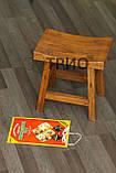 Електрокилимок з підігрівом для курчат ТРІО 01501, 43 х 30 см, фото 4