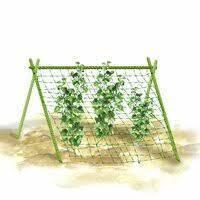 Опора для подвязки растений из композита, Ø 10 мм, высота 120 см, фото 3
