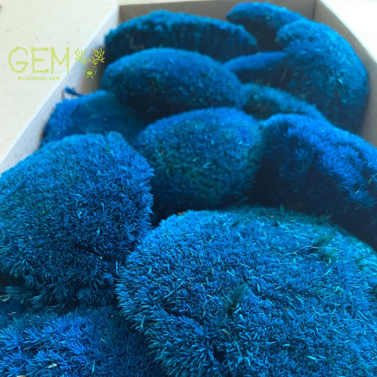Стабілізований мох Green Ecco Moss купина сині 1 кг.
