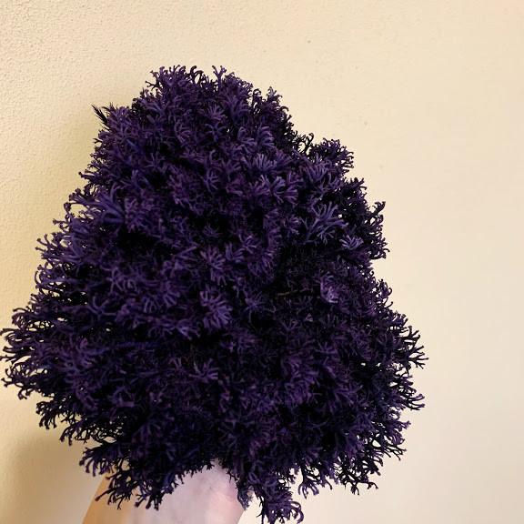 Стабілізований мох Green Ecco Лишайник ягель український фіолетовий 1 кг