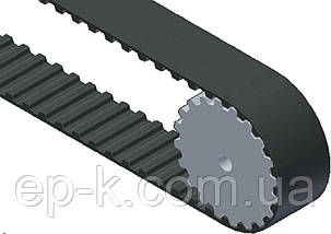 Ремень модульный зубчатый СБ 5-170-80, фото 3
