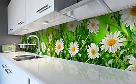 Виниловый 3Д кухонный фартук Живые Ромашки самоклеющаяся пленка ПВХ скинали Цветы Зеленый 600*2500 мм