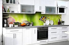 Вініловий 3Д кухонний фартух Махаон самоклеюча плівка ПВХ скіналі метелик орхідея Тварини Зелений 600*2500