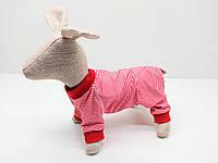 Комбинезон песочник для собак без застежек, фото 1