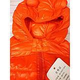 Жилетка оранж Рост: 73, 80 см, фото 3