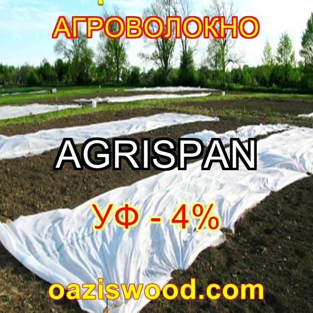 Агроволокно біле  3.2х50м  23г/кв.м UV-P 4% AGRISPAN-АГРИСПАН Польська якість за доступною ціною.