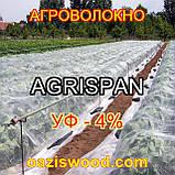 Агроволокно біле  3.2х50м  23г/кв.м UV-P 4% AGRISPAN-АГРИСПАН Польська якість за доступною ціною., фото 2