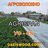 Агроволокно біле 6.35х100м 23г/кв. м UV-P 4% AGRISPAN-АГРИСПАН Польська якість за доступною ціною., фото 2