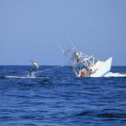 Ожидаемый прогноз рыбалки на 30, 31 октября и 1 ноября.