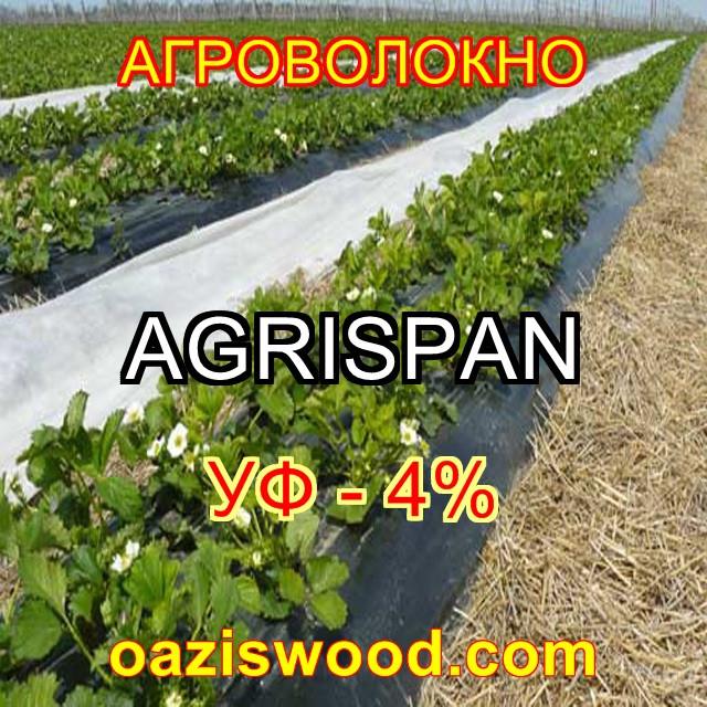 Агроволокно чорне UV-P 4% AGRISPAN-АГРИСПАН Польська якість за доступною ціною. 1.07х100м щільність 50г/кв.м.