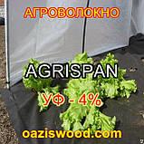 Агроволокно чорне UV-P 4% AGRISPAN-АГРИСПАН Польська якість за доступною ціною. 1.6х50м щільність 50г/кв.м., фото 2