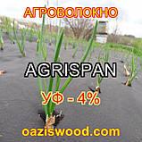 Агроволокно чорне UV-P 4% AGRISPAN-АГРИСПАН Польська якість за доступною ціною. 1.6х50м щільність 50г/кв.м., фото 3