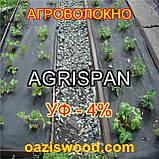 Агроволокно чорне UV-P 4% AGRISPAN-АГРИСПАН Польська якість за доступною ціною. 1.6х50м щільність 50г/кв.м., фото 5