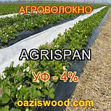 Агроволокно чорне UV-P 4% AGRISPAN-АГРИСПАН Польська якість за доступною ціною. 1.6х50м щільність 50г/кв.м., фото 7