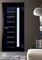 Дверь межкомнатная ТМ Феникс серия Z модель Виктория
