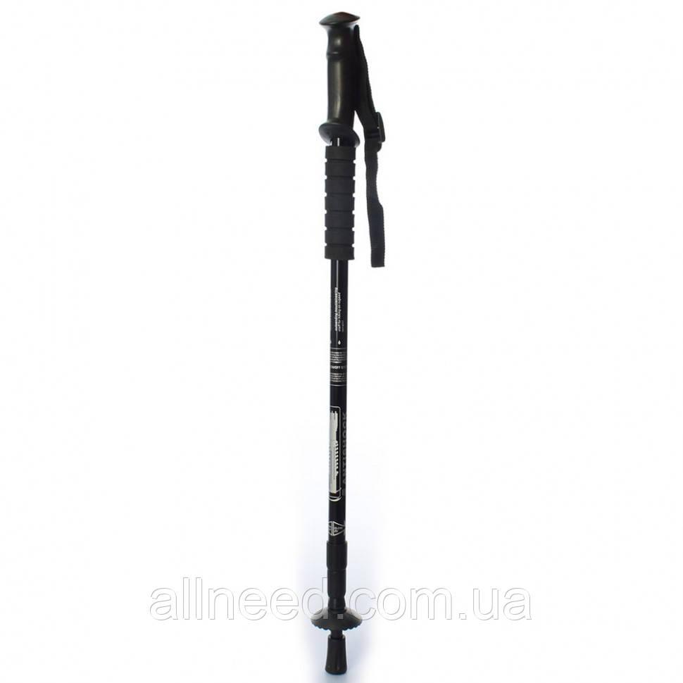 Палки для скандинавской ходьбы трекинговые палки (Черный)