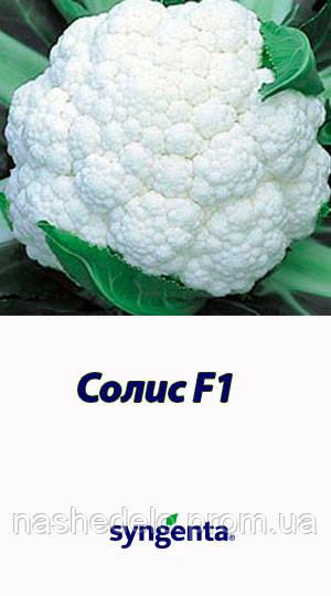 Семена цветной капусты Солис f1 2500 семян Syngenta