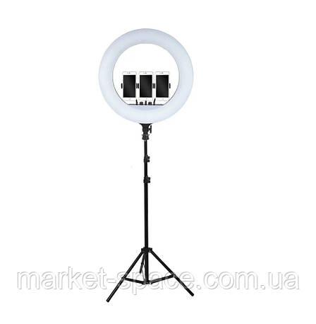 Кольцевая cветодиодная лампа Ring Light ZB-F348 60W (диаметр 45 cм) +пульт ДУ +штатив +сумка, фото 2