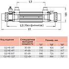 Elecro Теплообменник Elecro G2I 30 кВт Incoloy, фото 4