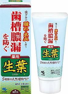KOBAYASHI Shoyo медицинская зубная паста 5 натуральных трав мятный вкус 100 грамм