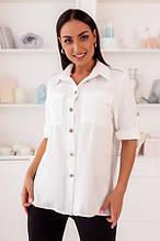Блузы, туники и рубашки
