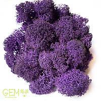 Стабилизированный мох Green Ecco Moss ягель скандинавский фиолетовый 4 кг, фото 1