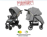 Детская Прогулочная коляска CARRELLO Echo +дождевик, подстаканник Rhino Gray