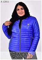 Стильная куртка на молнии женская осень-весна размеры 42-66