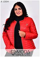 Короткая женская красная куртка на молнии размеры 42-66