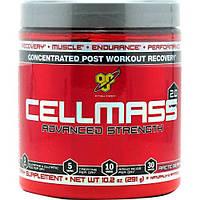 Послетренировочные комплексы BSN Cellmass 2.0 291 г