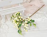 Ветка с ягодами белыми