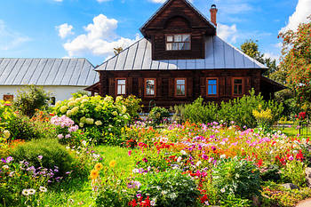 Дача, сад, огород