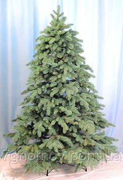 Ялинка лита Альпійська зелена С022 і блакитна С024 від 120 см до 3 метрів