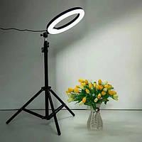 КОЛЬЦЕВАЯ LED лампа 30СМ JY-300 + штатив 2м селфи лампа кольцевой свет