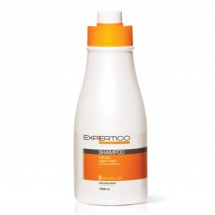 Шампунь для всех типов волос TICO Professional Expertico, 1500 мл, фото 2