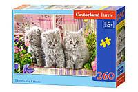 Пазлы Три серых котёнка на 260 элементов