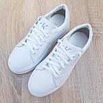 Женские высокие кроссовки Calvin Klein (белые) 20222, фото 7